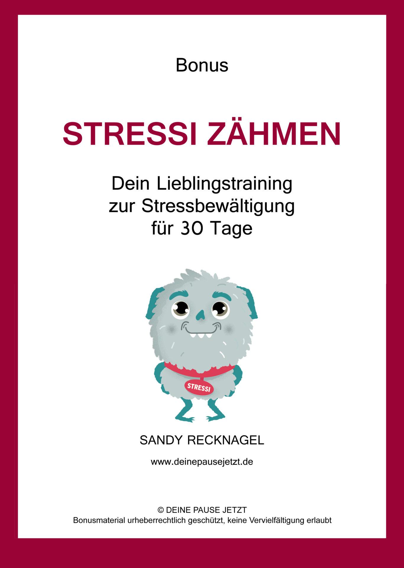 Stressberatung-Sandy-Recknagel-DEINE-PAUSE-JETZT